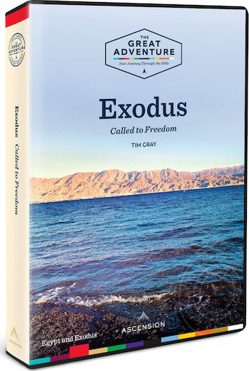 Exodus 2019: DVD Set