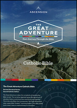 RSV, The Great Adventure Catholic Bible, leather
