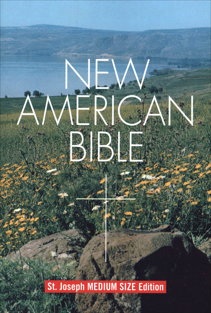 NABRE, New American Bible, St. Joseph Edition, paperback