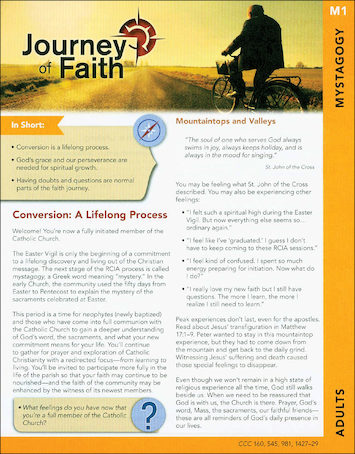 Journey of Faith for Adults 2016: Mystagogy Participant