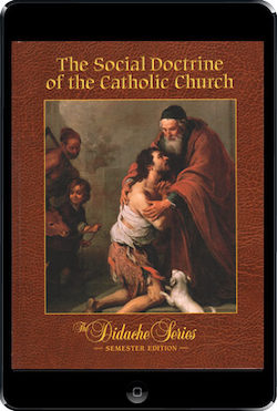 The Social Doctrine Of The Catholic Church, ebook (180 Day Access), Student Text
