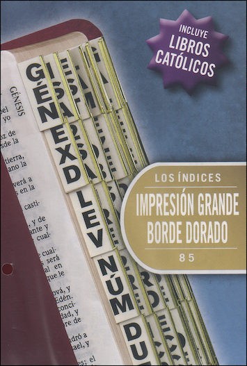 Bible Indexing Tabs: Etiquetas de Indizacion para biblias, Large Print, 10-pack