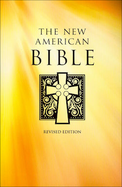 NABRE, The New American Bible, softcover