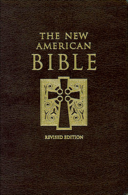 NABRE, The New American Bible, leather